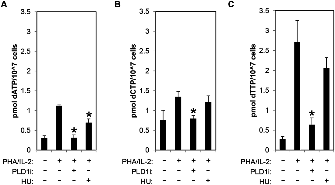 PLD activity is essential for dNTP pool expansion in activated CD4+ T cells.