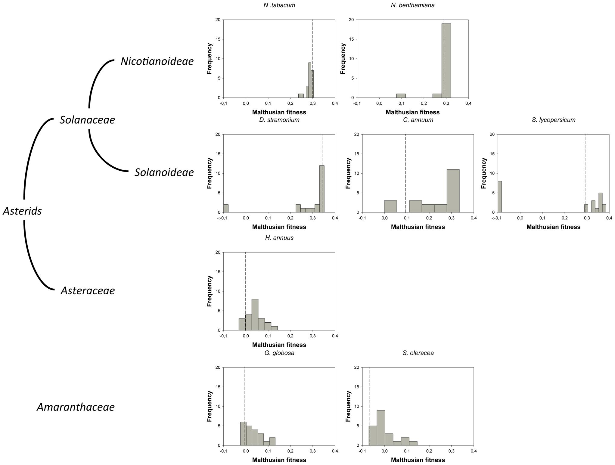 DMFEs across different host species.