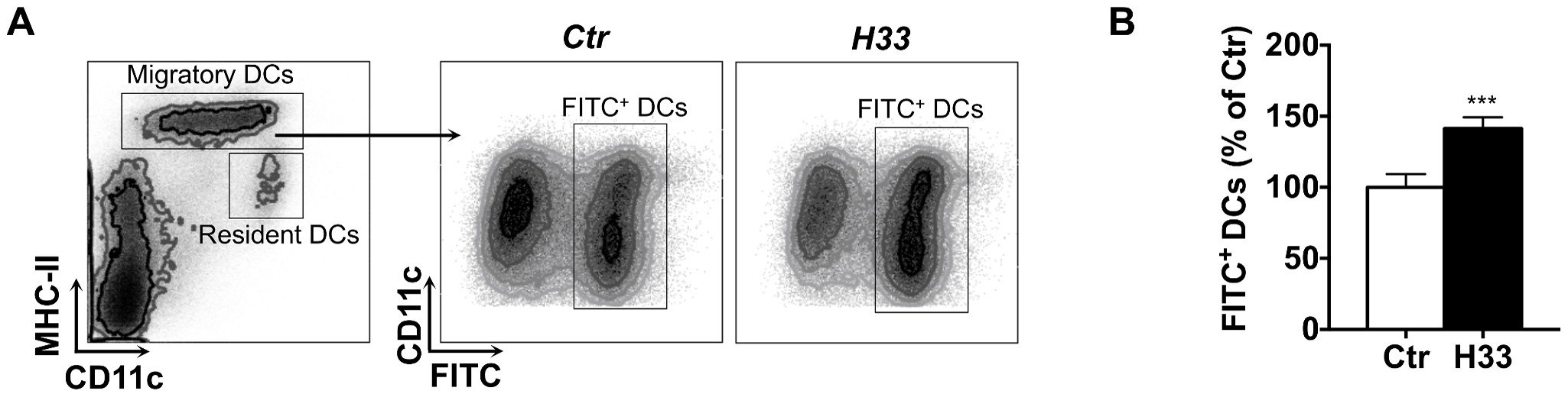 Blocking JAM-C increases the number of DCs migrating to the draining lymph node.