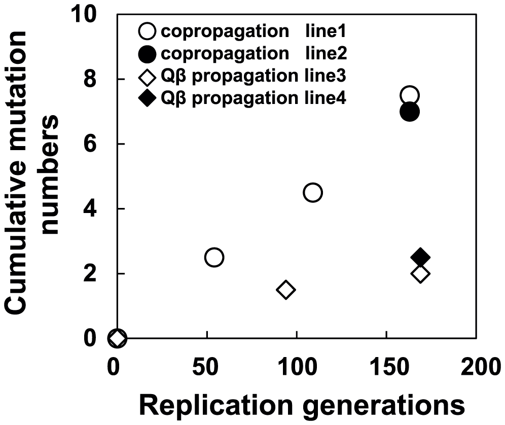 Time course of changes in cumulative mutations in the Qβ genome.