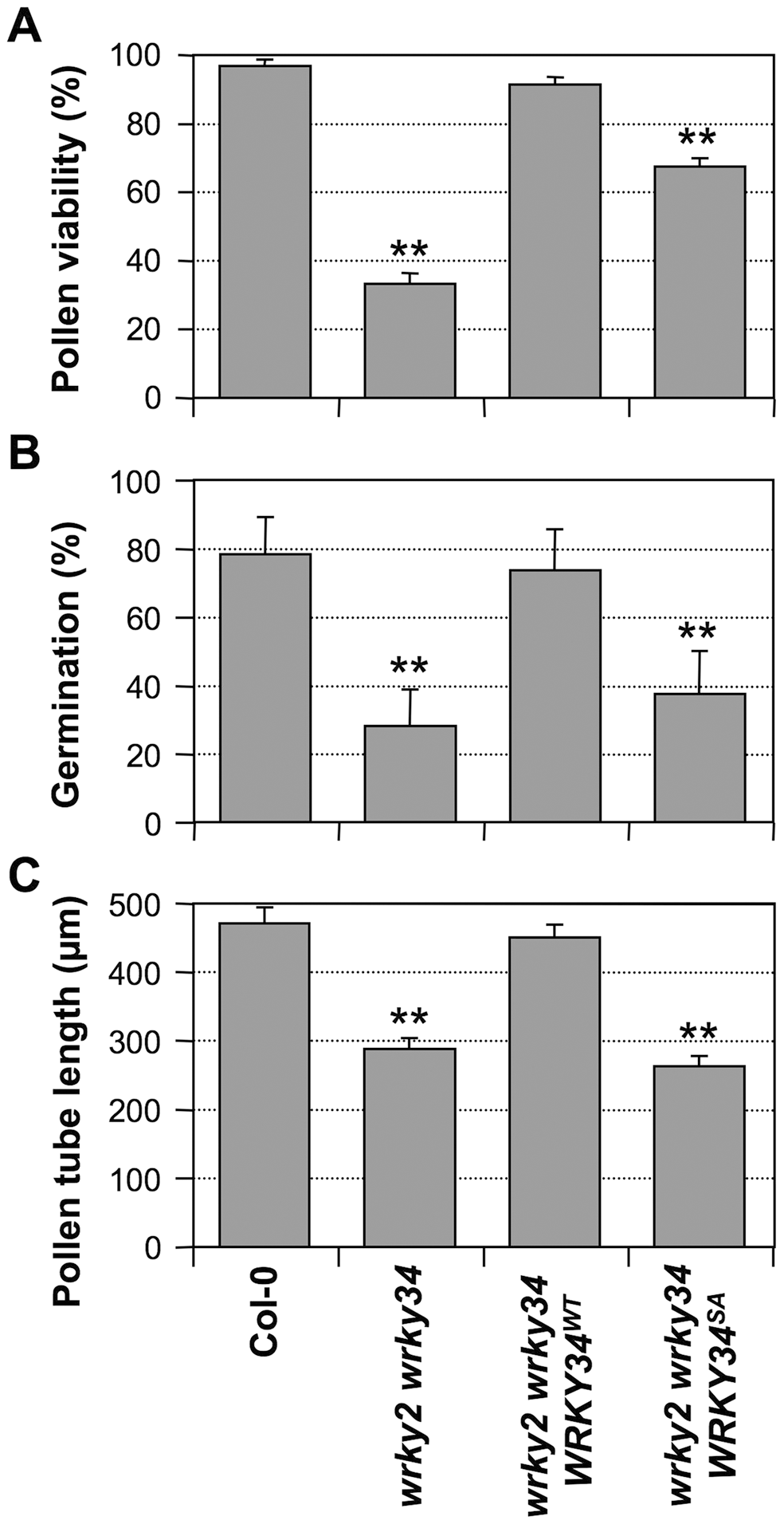 Complementation of <i>wrky2-1 wrky34-1</i> double mutant pollen phenotypes by <i>WRKY34<sup>WT</sup></i> and <i>WRKY34<sup>SA</sup></i>.