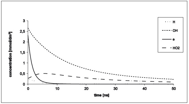 Fig. 4: Concentrations depending on time at oxygen concentration 0.284 nmol.dm<sup>−3</sup> for cluster diameter 27 nm and energy 300 eV.