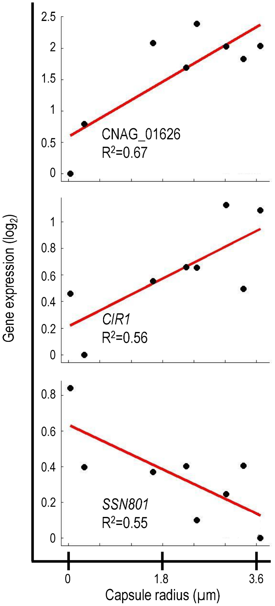 Correlation of gene expression and capsule size for selected genes.