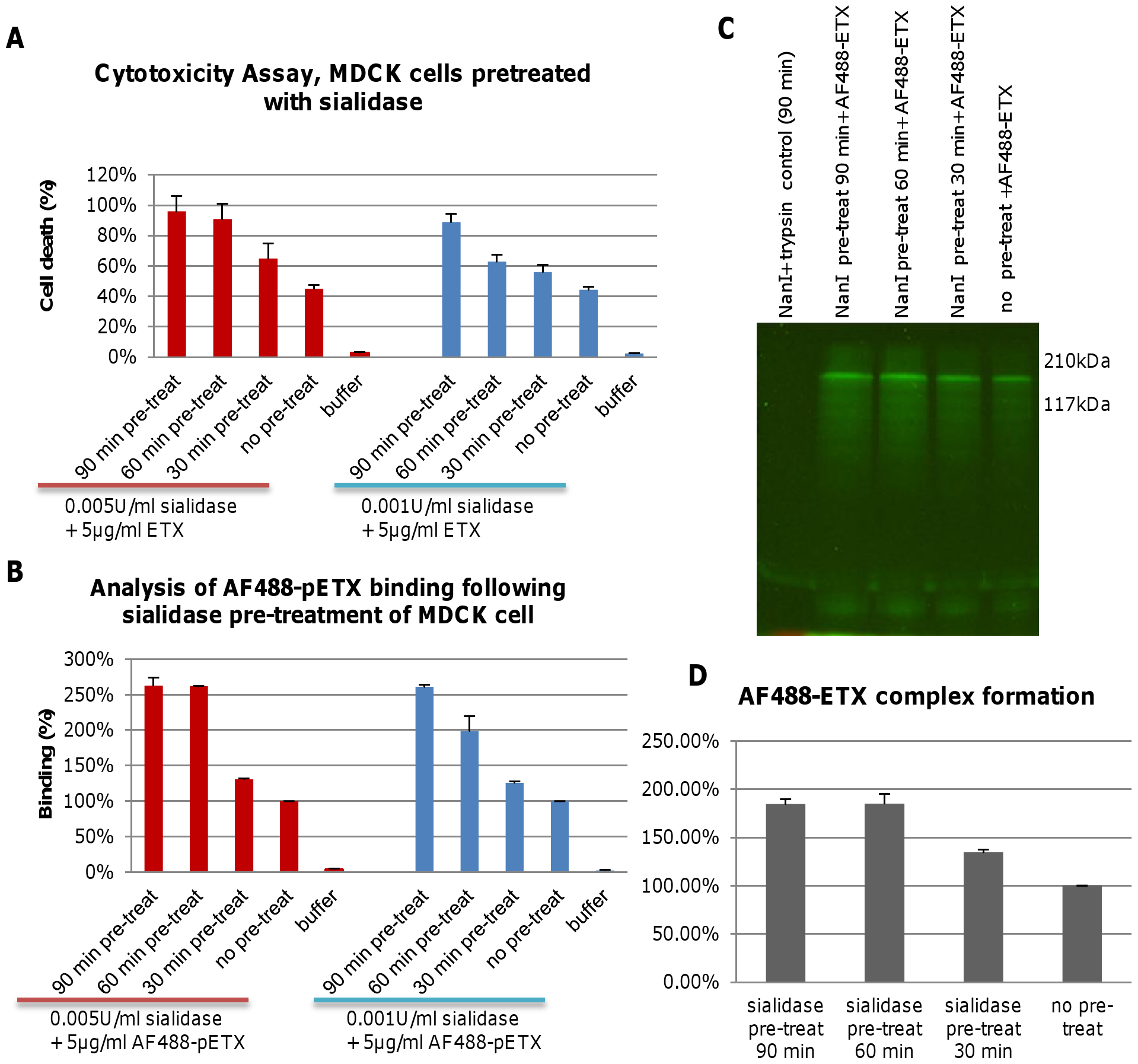 Pre-treatment of MDCK cells with purified NanI enhances ETX binding and cytotoxicity.