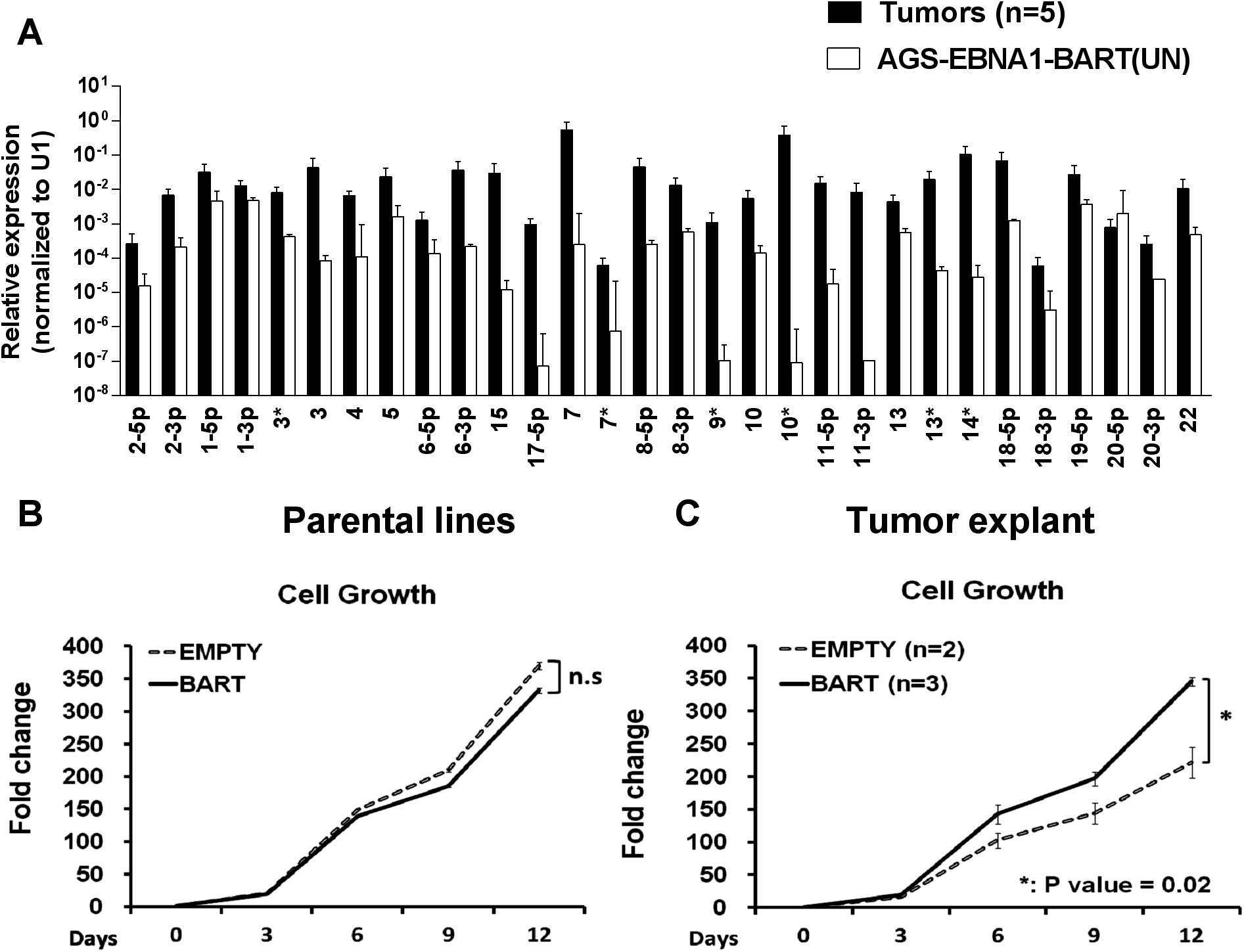 <i>In vitro</i> analysis of newly explanted tumor cells and their parental <i>in vitro</i> lines.