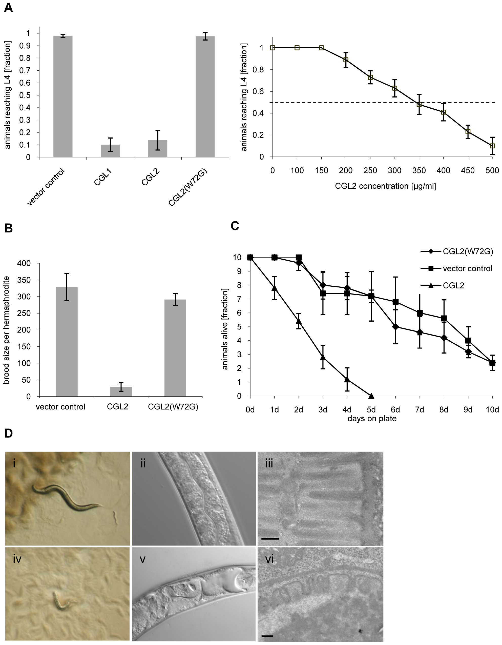 Dose and carbohydrate-binding dependent toxicity of <i>C. cinerea</i> galectin CGL2 towards <i>C. elegans</i>.