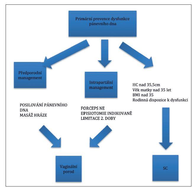 Algoritmus primární prevence poškození svalů pánevního dna podle Lavyho [9]