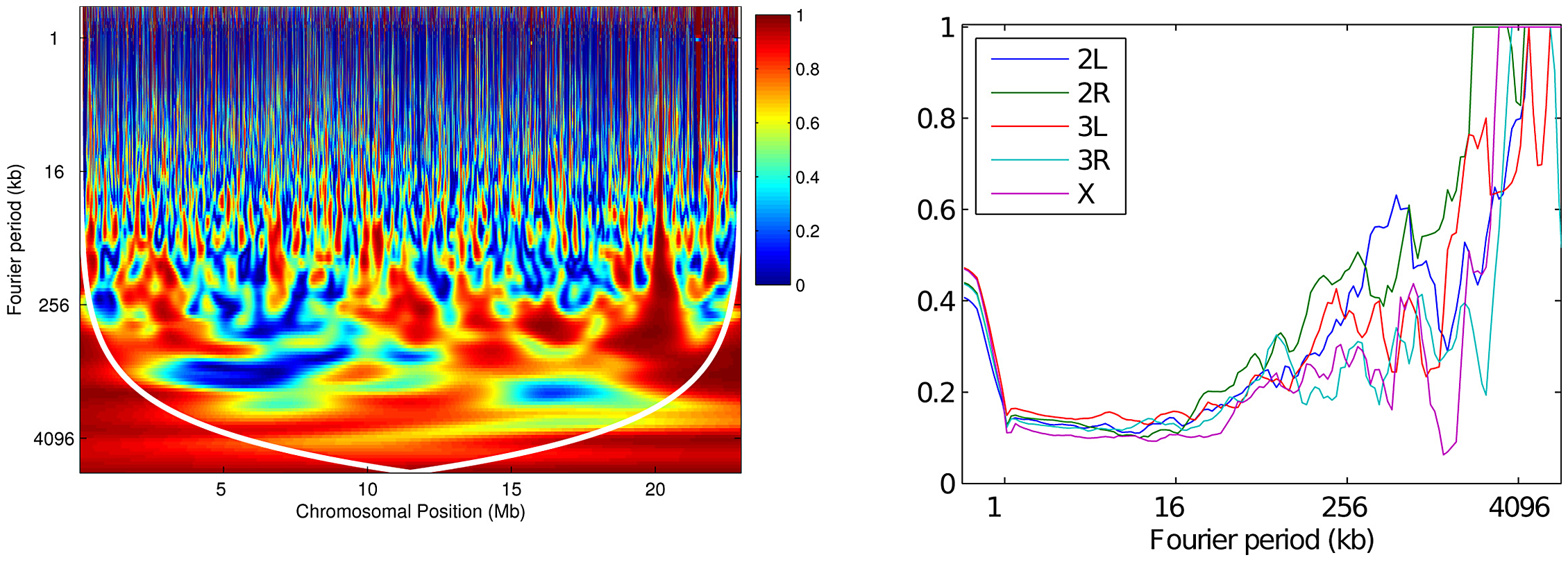 Wavelet coherence analysis comparing RAL against RG.