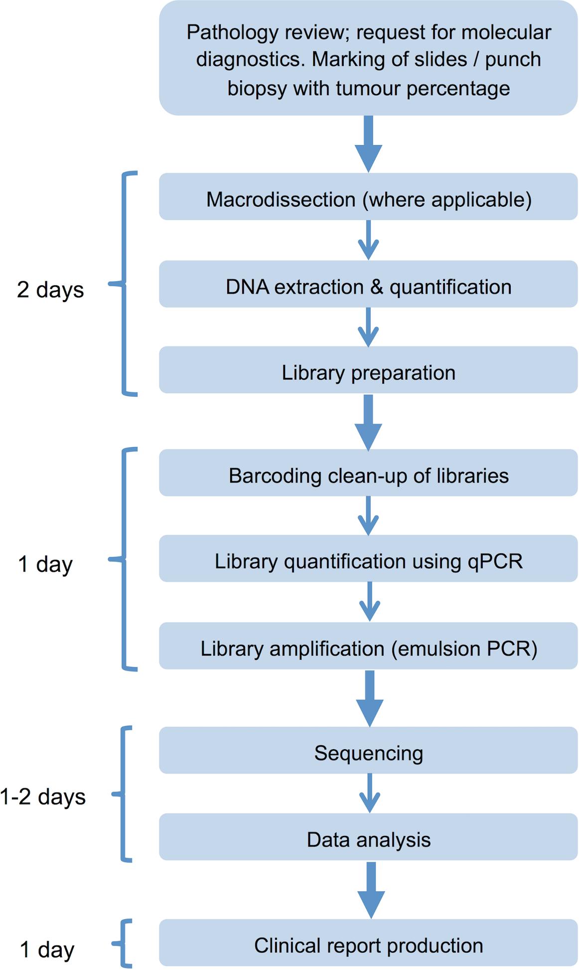 Next generation sequencing laboratory workflow.