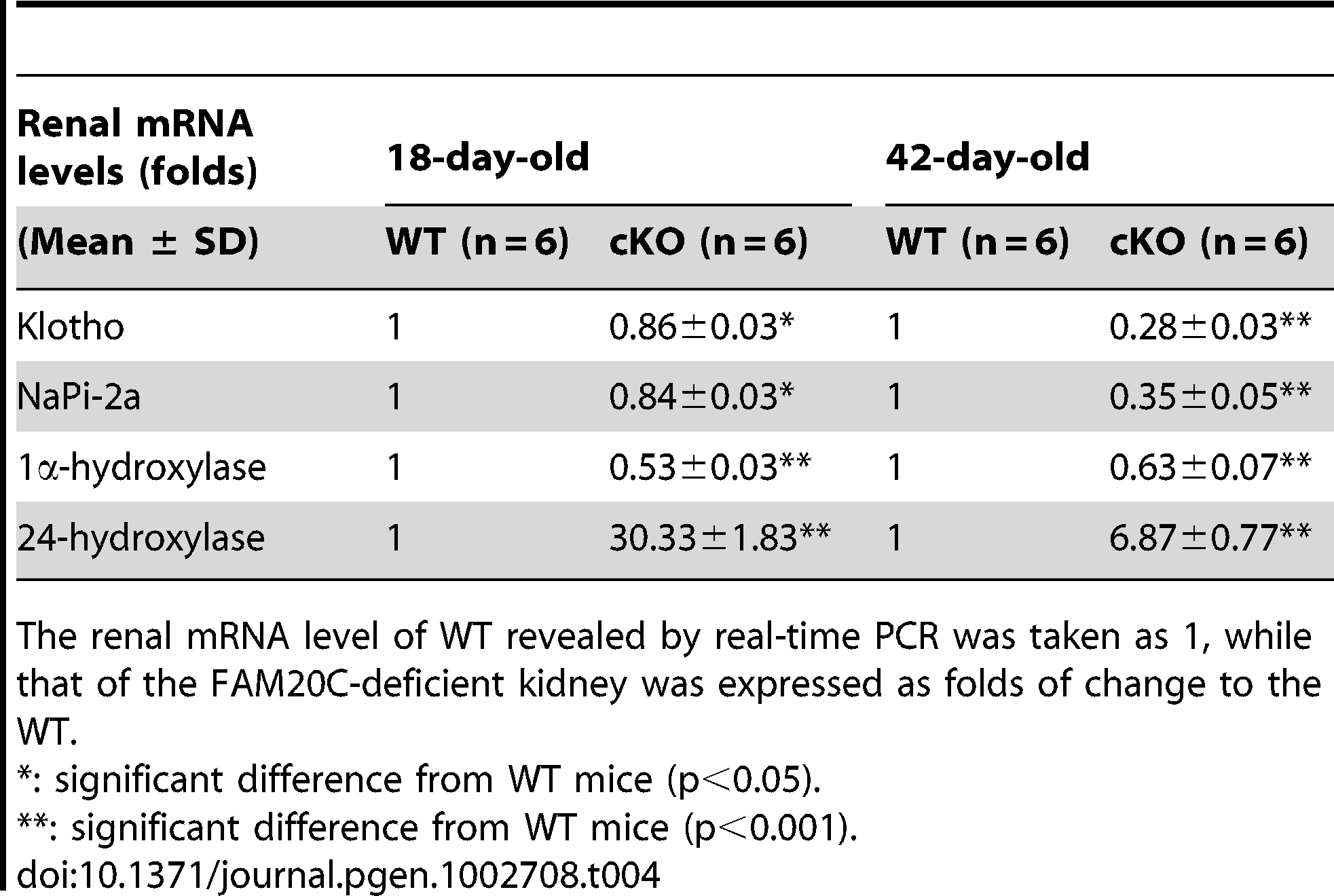 Renal mRNA levels of Klotho, NaPi-2a, 1α-hydroxylase, and 24-hydroxylase in the 18-day-old and 42-day-old WT and <i>Fam20c</i>-cKO mice.
