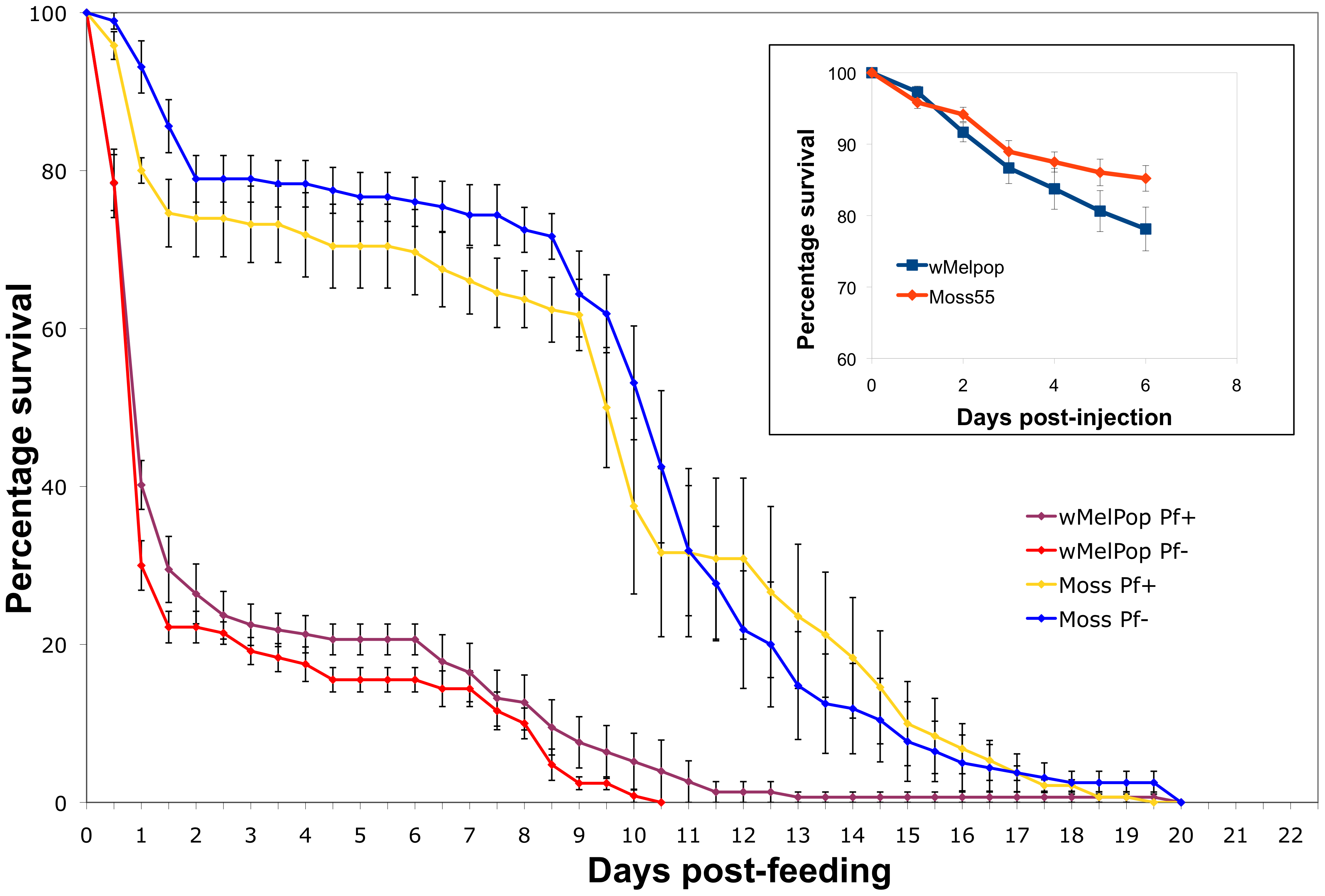 Mortality of wMelPop-infected <i>An</i>. <i>gambiae</i> mosquitoes.