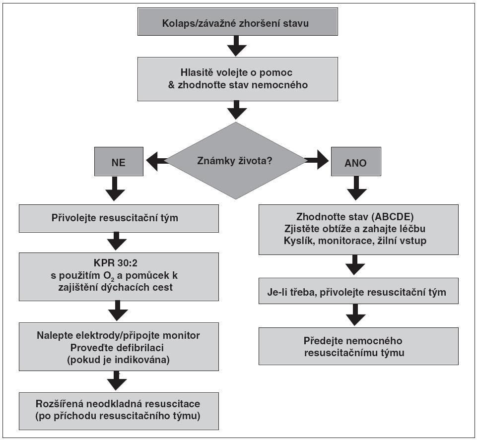 Obr. 4. Algoritmus postupu při resuscitaci v nemocnici (oficiální překlad algoritmu ERC [2, 7], Česká resuscitační rada, 2010)