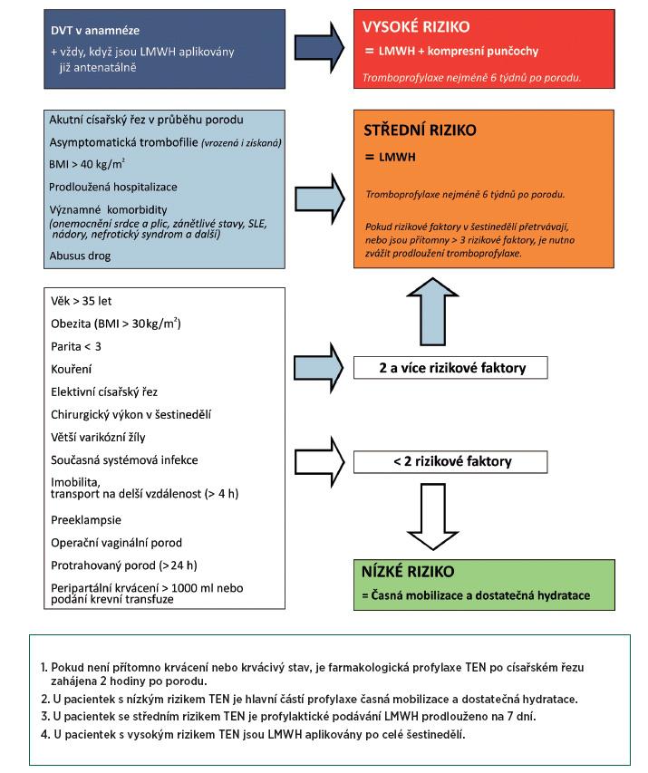 Schéma 1. Zhodnocení a management rizika TEN po porodu Adaptováno z doporučení RCOG 2009 [58].