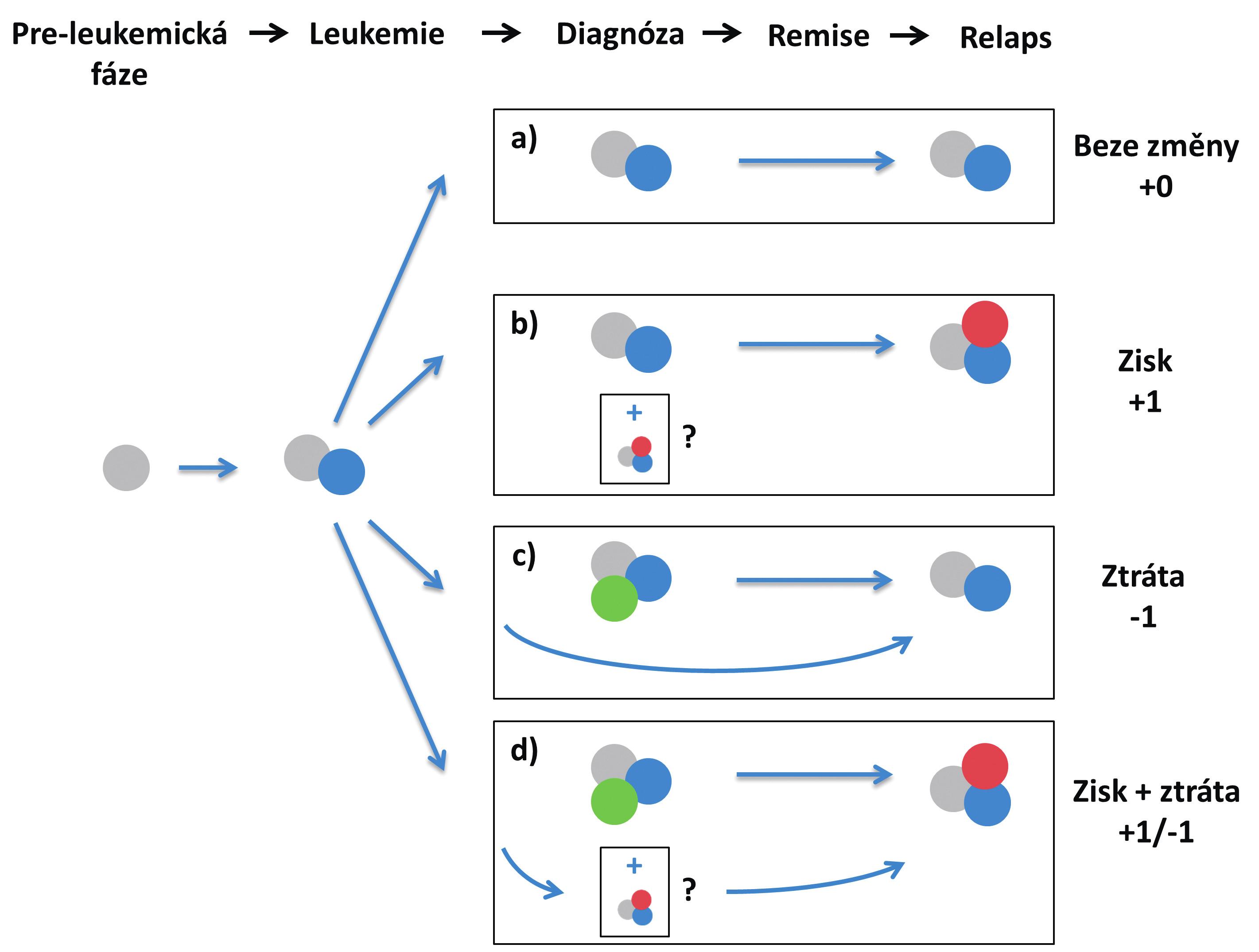 Scénáře relapsu na základě zisku/ztráty mutací a) relaps hlavního diagnostického klonu, bez zisku/ztráty mutací; b) zisk mutace v relapsu; c) ztráta mutace v relapsu – dominantní diagnostický klon zaniká, relaps pochází z vývojově předcházejícího leukemického klonu; d) současná ztráta a zisk jiné mutace – dominantní diagnostický subklon zaniká, relaps pochází z vývojově předcházejícího leukemického klonu V případech b) a d) se může jednat o evoluci nového leukemického subklonu během léčby nebo po léčbě, nebo o nárůst minoritního subklonu, který byl již přítomen v době diagnózy.