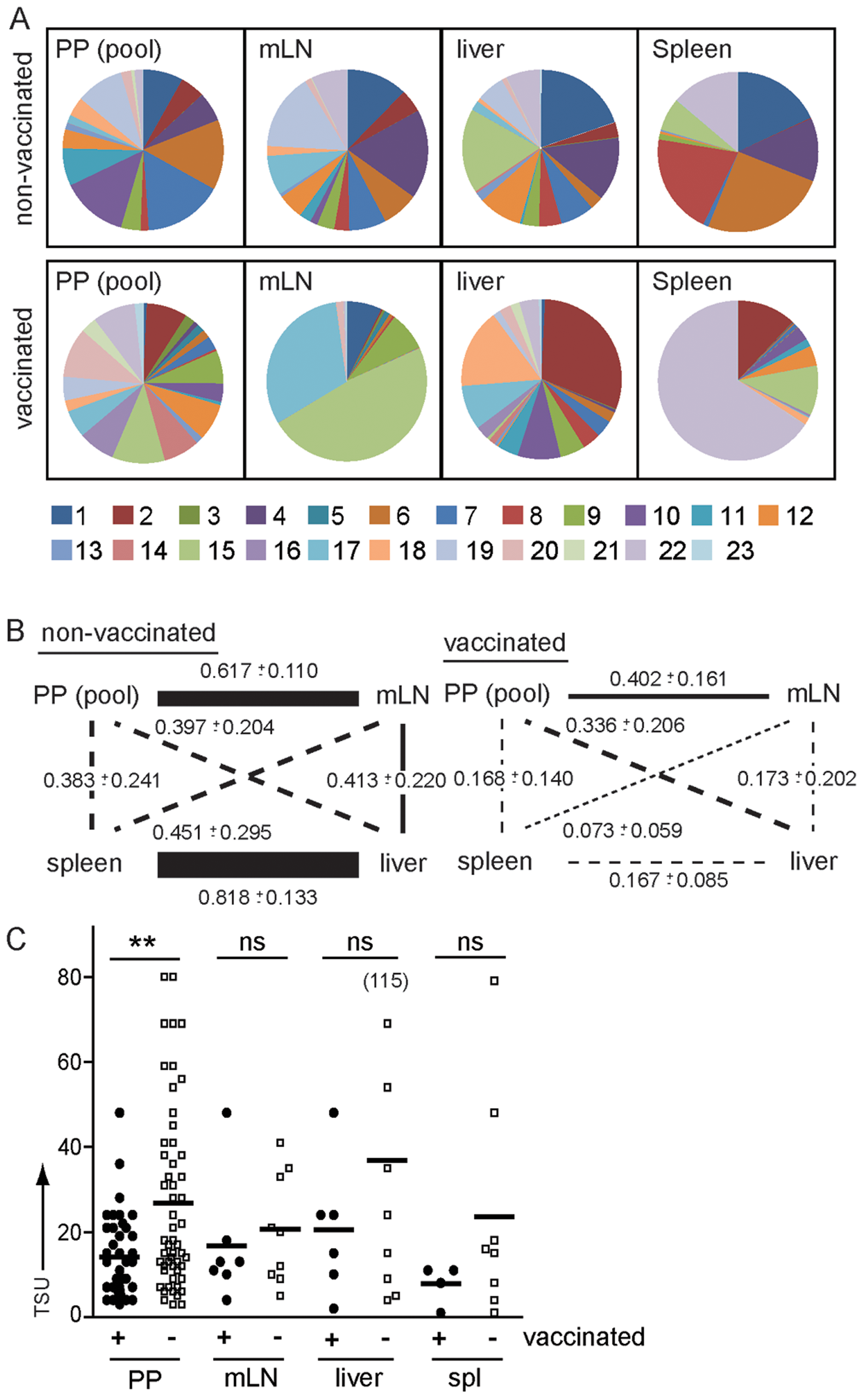 Vaccination modulates routes of <i>S.</i> Typhimurium dissemination.