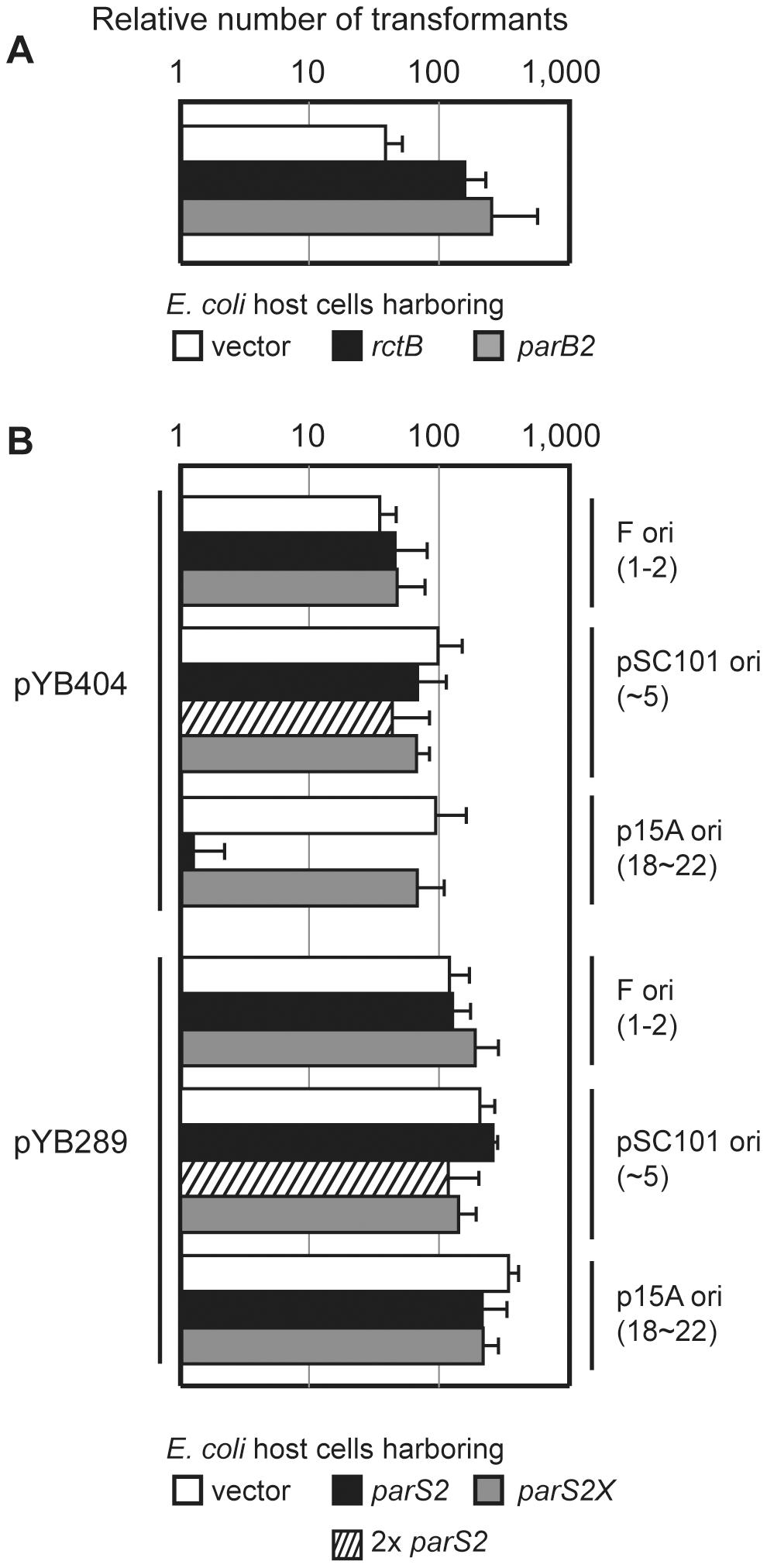 Titration of ParB2 by multicopy <i>parS2</i> prevents <i>oriCII</i> replication.