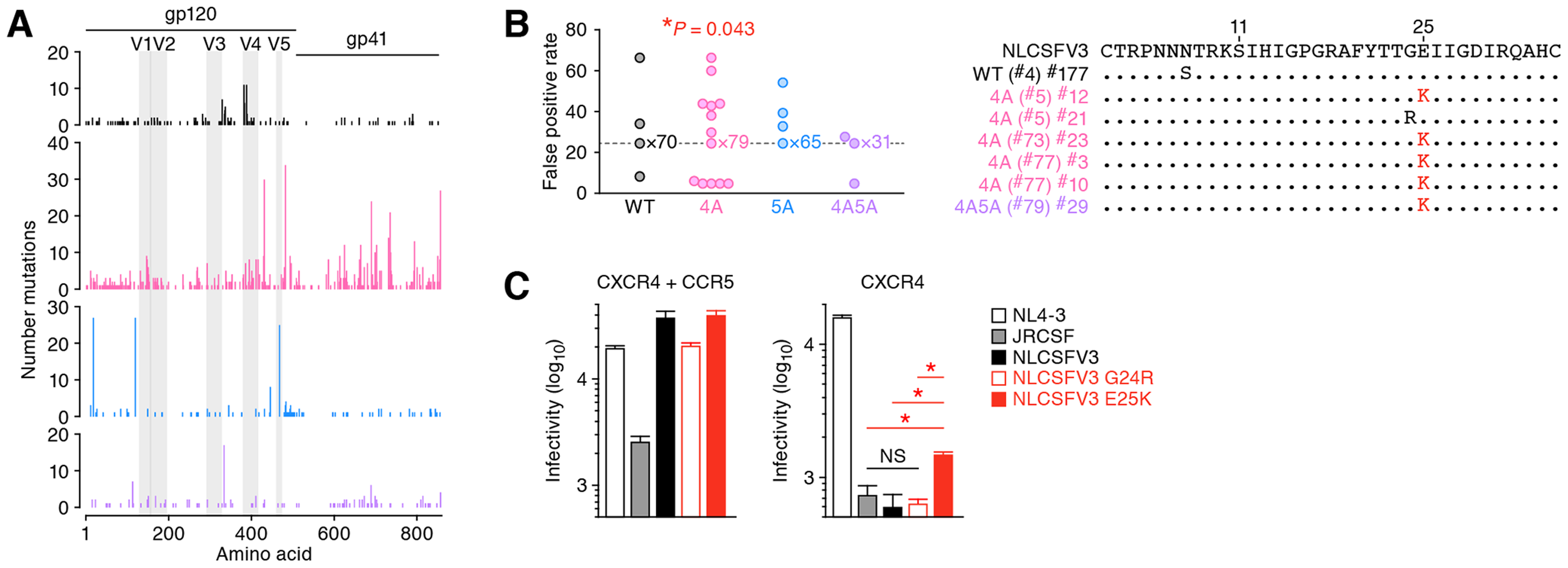 Functional evolution of 4A HIV-1 <i>in vivo</i>.