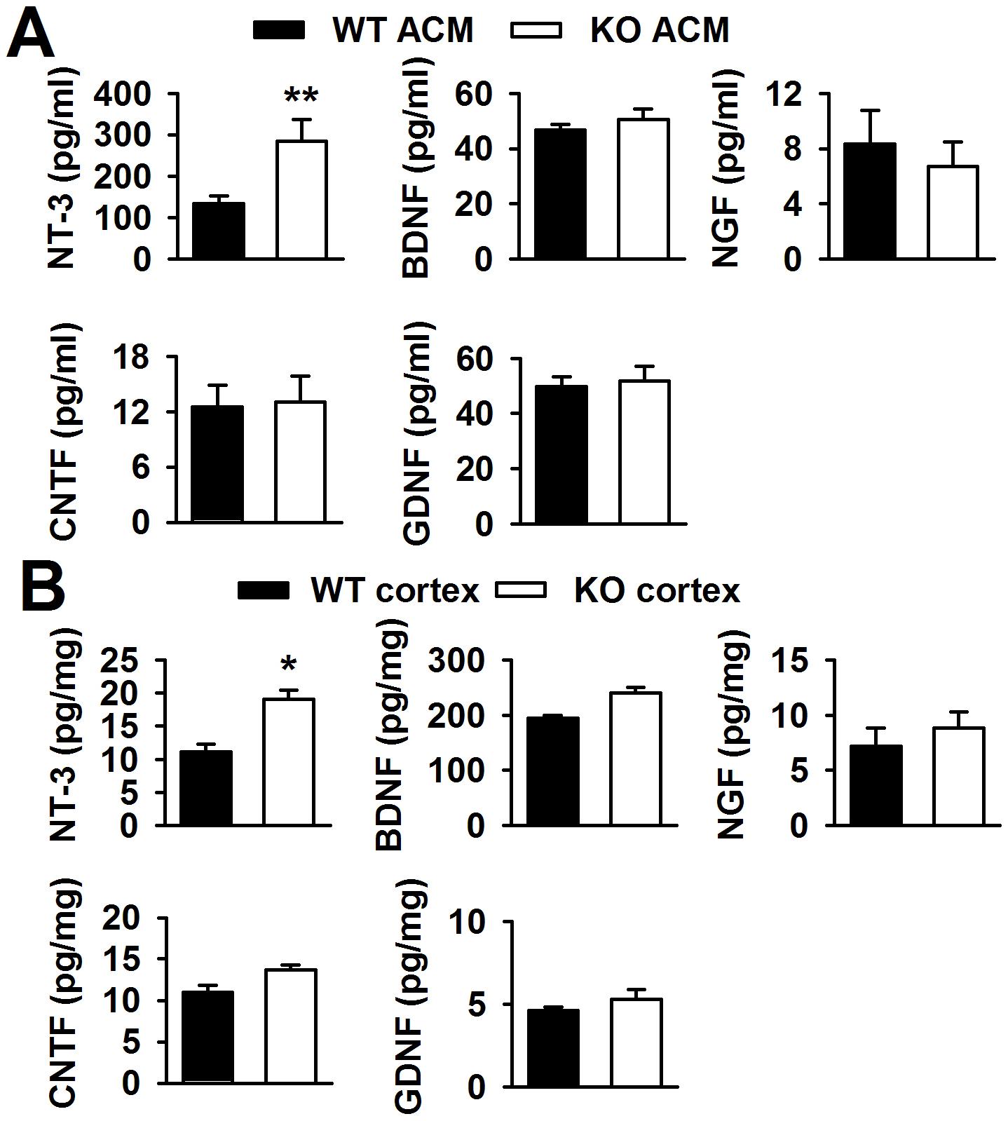 Levels of neurotrophic factors <i>in vitro</i> and <i>in vivo</i>.