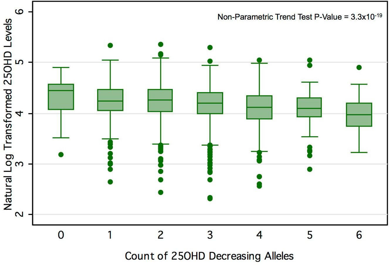 25OHD level by number of 25OHD-decreasing alleles in the CaMos cohort.