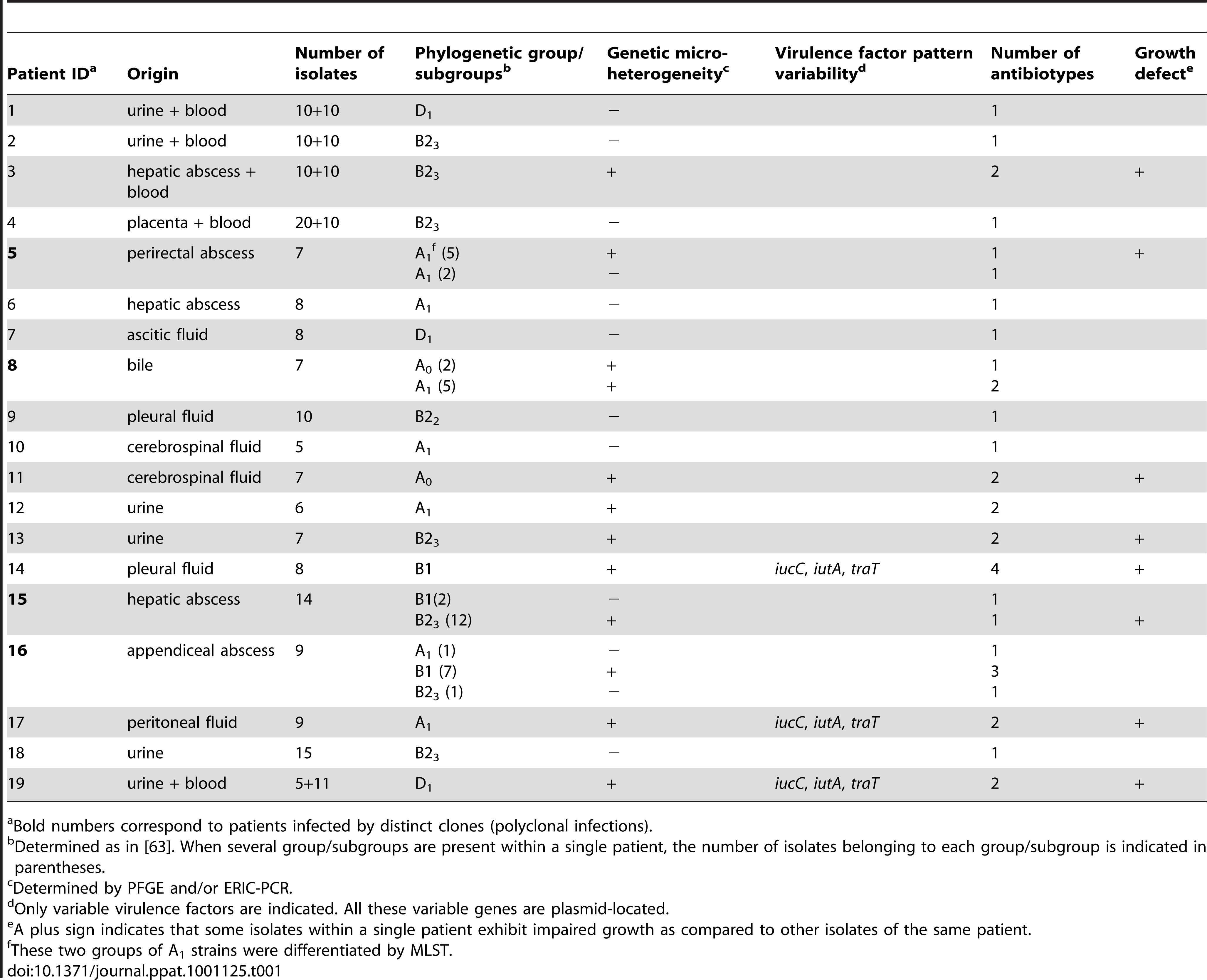 Main characteristics of the <i>E. coli</i> studied.