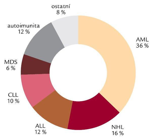 Rozdělení případů IA dle základního hematologického onemocnění (n = 51 pacientů).
