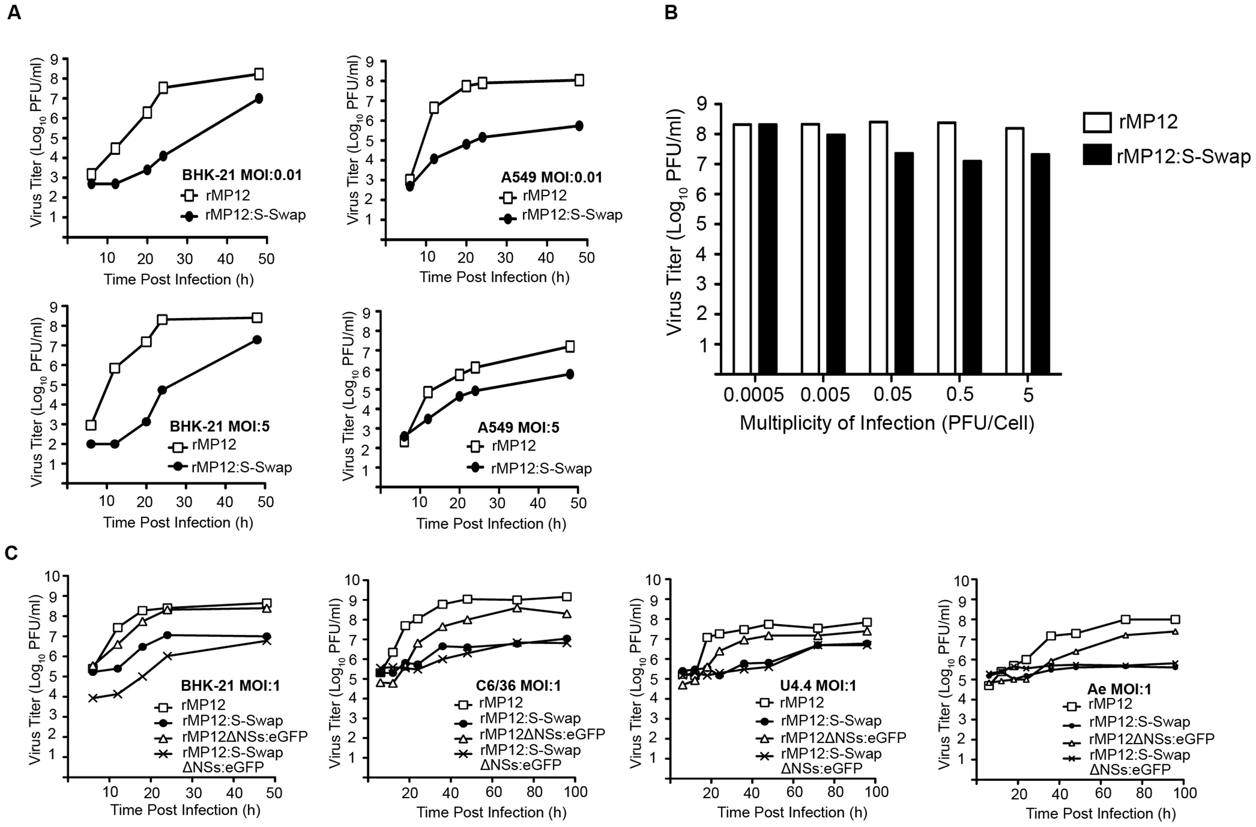 Growth properties of recombinant viruses.