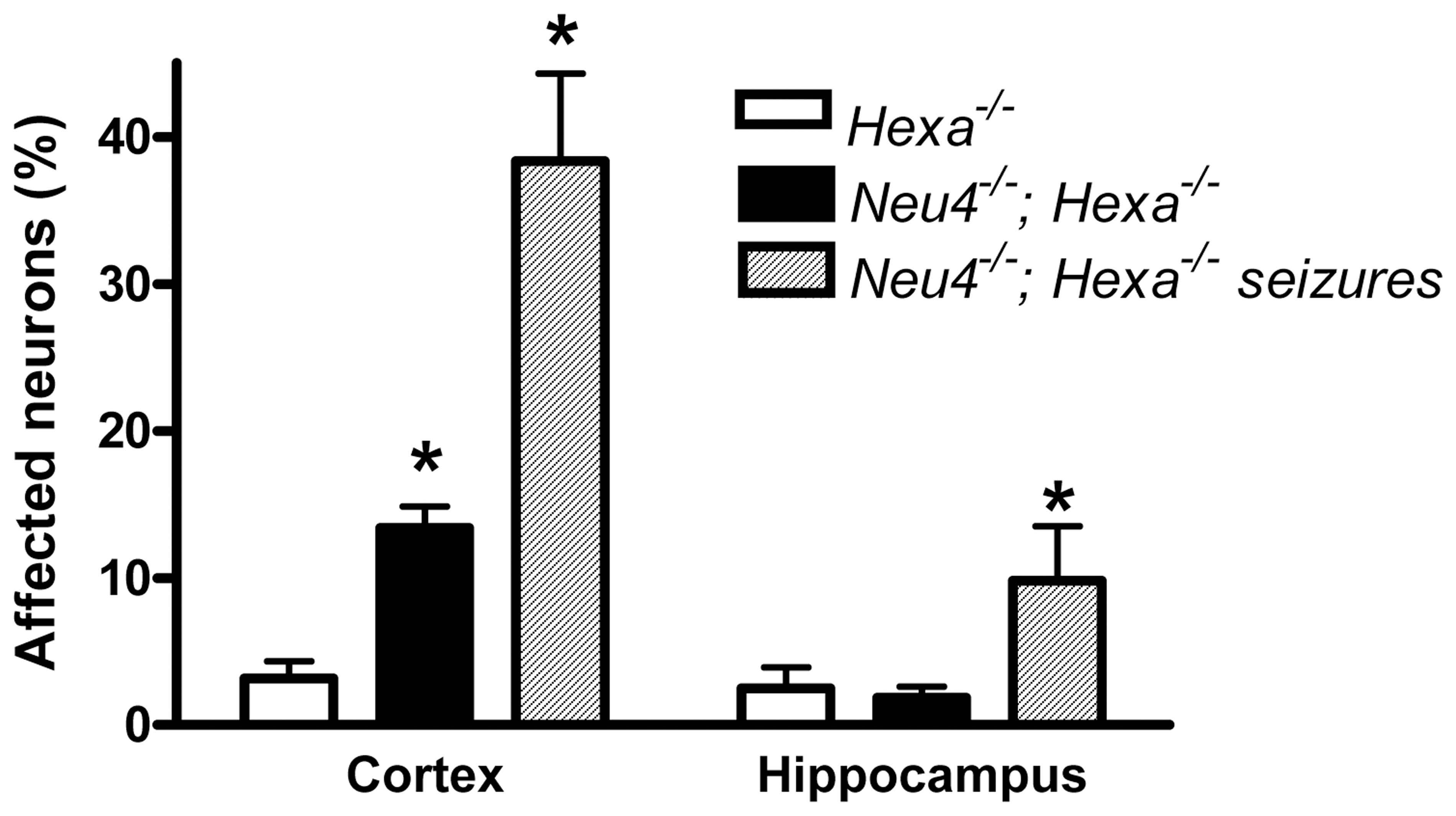 Percent of affected neurons in cortex and hippocampus.