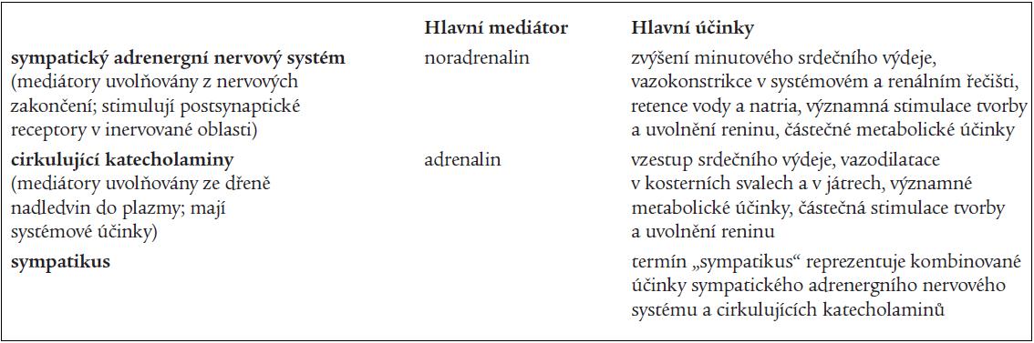 Definice jednotlivých termínů užívaných ve vztahu k sympatickému nervovému systému v tomto článku.