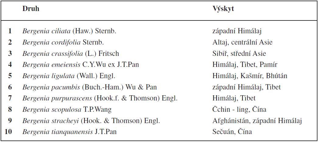 V současnosti je známo deset původních druhů z rodu Bergenia<sup>8, 9, 62)</sup>