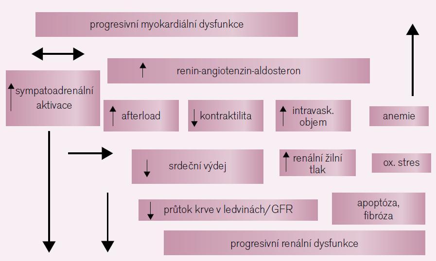 Patofyziologie kardiorenálního syndromu.