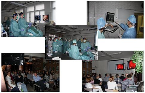 Obrazová dokumentácia z priebehu 16. rinochirurgického demonštračného kurzu v Ružomberku.