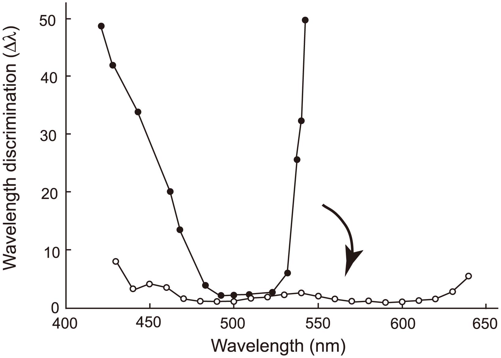 Evolutionary change in the wavelength discrimination by human ancestors.