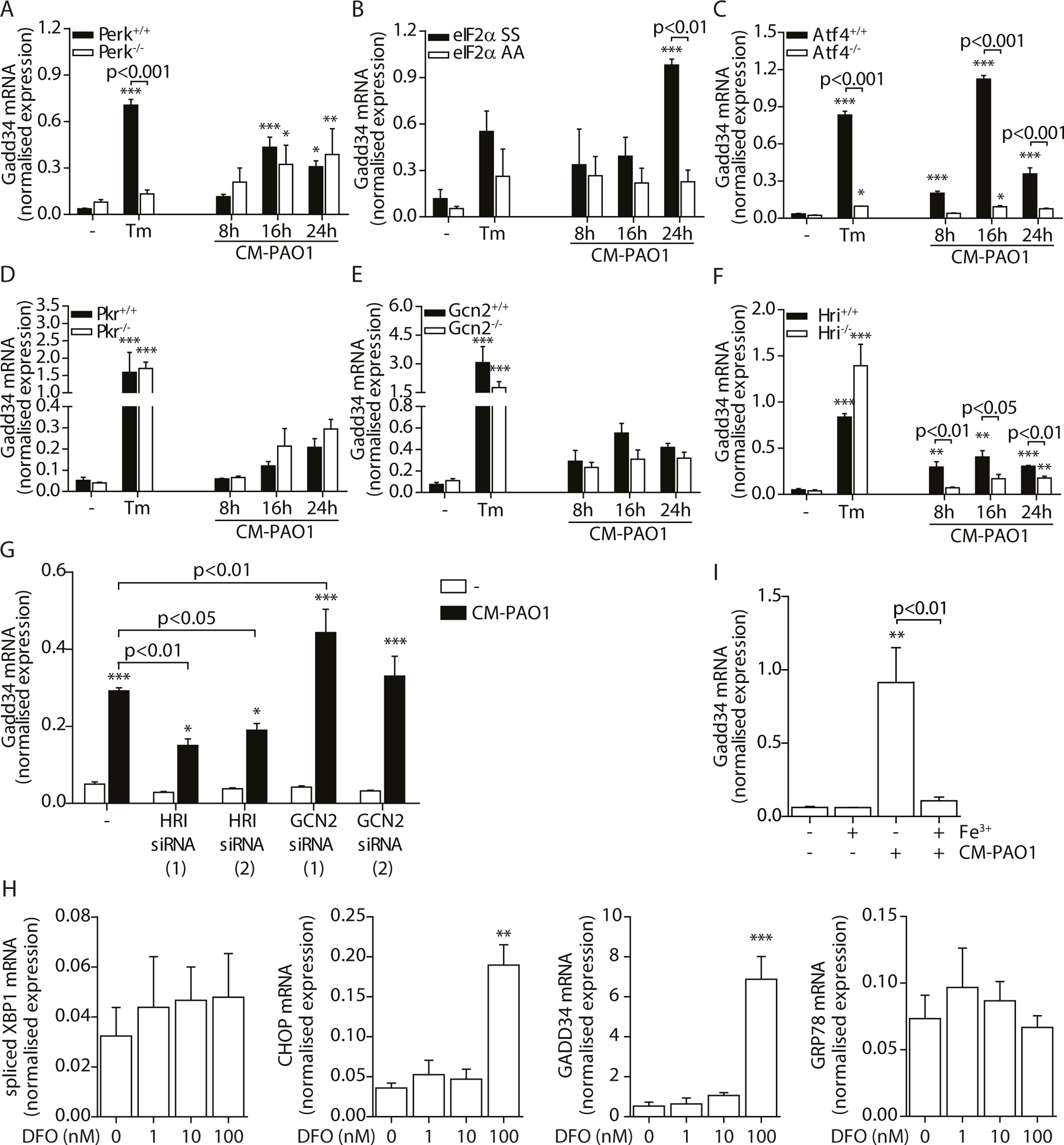 <i>GADD34</i> mRNA is regulated via the activation of the integrated stress response by <i>P</i>. <i>aeruginosa</i>.