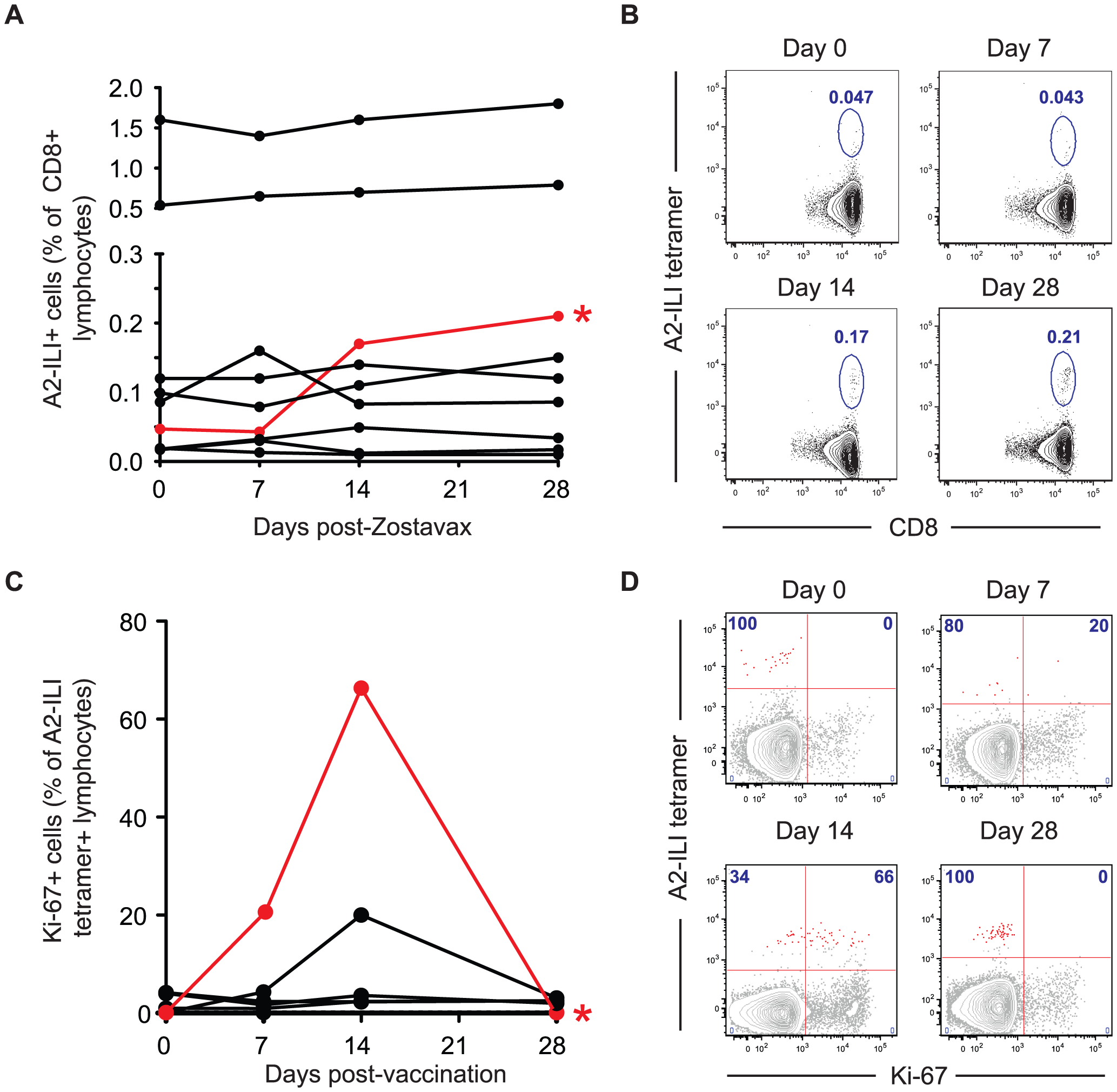 The live attenuated vaccine Zostavax cannot efficiently induce proliferation of ILI-specific CD8 T cells in most individuals.