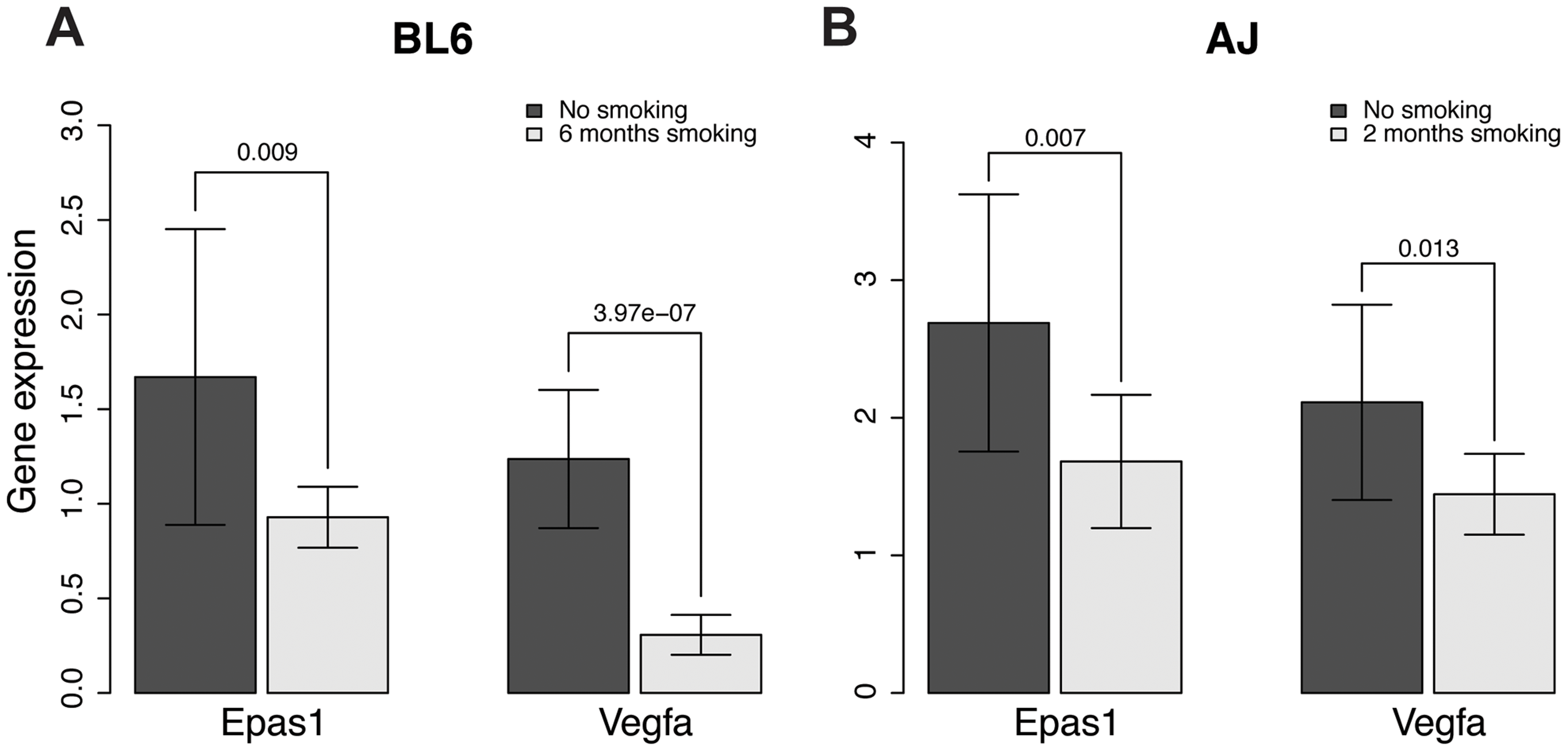 Gene expression levels of <i>Epas1</i> and <i>Vegfa</i> were lower in chronic smoking mice than non-smoking age-matched mice at the time when COPD develops in different mouse models.