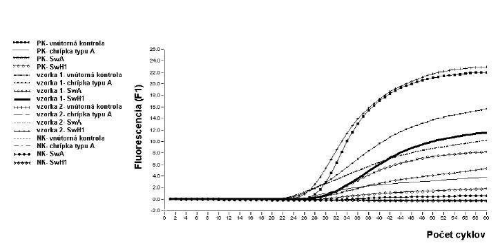 Vyhodnotenie vyšetrenia vzoriek pomocou real-time PCR na dôkaz prítomnosti vírusu chrípky typu A/ H1N1 pandemickej. Počas amplifikácie dochádza ku nárastu fluorescenčných kriviek u vyšetrovanej vzorky číslo 1 ako aj u pozitívnej kontroly, meranie je pozitívne, čo dokazuje prítomnosť génov chrípky typu A/H1N1 pandemickej. Naopak, v prípade vyšetrenia vzorky 2 ako aj v prípade negatívnej kontroly fluorescenčné krivky sú lineárne, čo vylučuje prítomnosť génov chrípky typu A/H1N1 pandemickej. U vnútornej kontroly vzorky 1 došlo k nárastu fluorescencie, čo potvrdzuje správny priebeh real-time PCR. 1 – PK vnútorná kontrola; 2 – PK chrípka typu A; 3 – PK SwA; 4 – PK SwH1; 5 – vzorka 1 vnútorná kontrola; 6 – vzorka 1 chrípka typu A; 7 – vzorka 1 SwA; 8 – vzorka 1 SwH1; 9 – vzorka 2 vnútorná kontrola; 10 – vzorka 2 chrípka typu A; 11 – vzorka 2 SwA; 12 – vzorka 2 SwH1; 13 – NK vnútorná kontrola; 14 – NK chrípka typu A; 15 – NK SwA; 16 – NK SwH1  Fig. 2. Evaluation of results of real-time PCR for the detection of A/ H1N1 pandemic influenza virus. Amplification results in increase in fluorescence curves for both specimen 1 and positive control, measurement is positive, which indicates the presence of the genes of the A/H1N1 pandemic influenza virus. Conversely, both specimen 2 and negative control yield linear lines which exclude the presence of the genes of the A/H1N1 pandemic influenza virus. The specimen 1 internal control showed increase in fluorescence which indicates that the real-time PCR is performed properly. 1 – positive control, internal control; 2 – positive control, type A influenza; 3 – positive control, SwA; 4 – positive control, SwH1; 5 – specimen 1 internal control; 6 – specimen 1 type A influenza; 7 – specimen 1 SwA; 8 – specimen 1 SwH1; 9 – specimen 2 internal control; 10 – specimen 2 type A influenza; 11 – specimen 2 SwA; 12 – specimen 2 SwH1; 13 – negative control, internal control; 14 – negative control, type A influenza; 15 – negative control, SwA; 16 – 