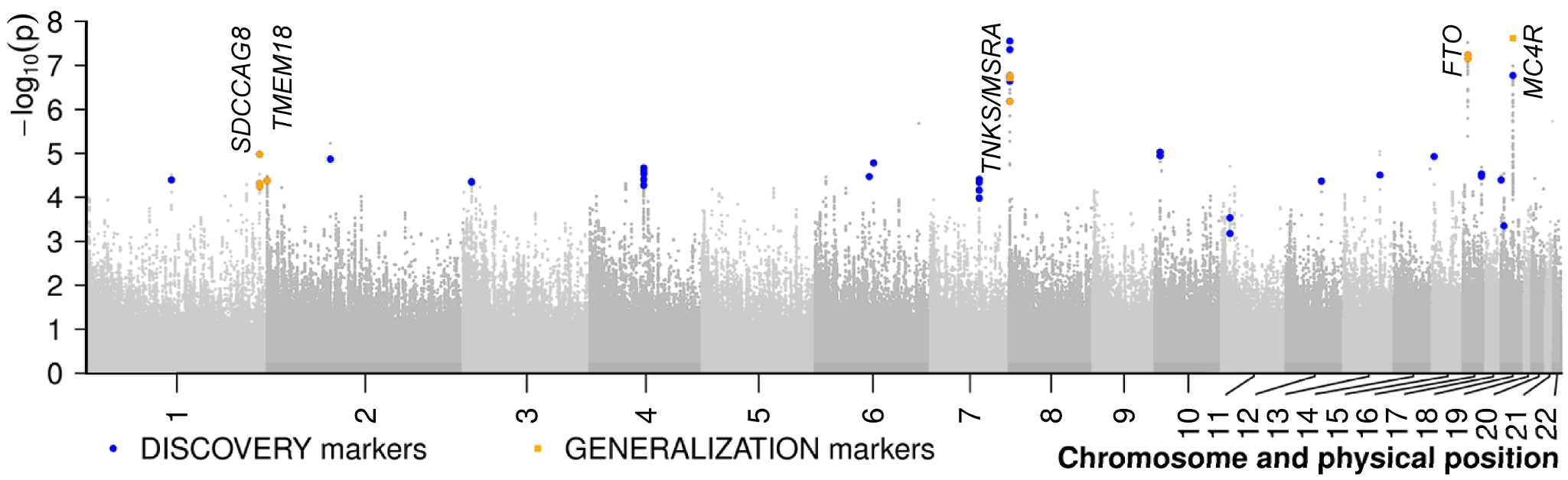 Results of the meta-analysis of two genome-wide association studies for early-onset extreme obesity.