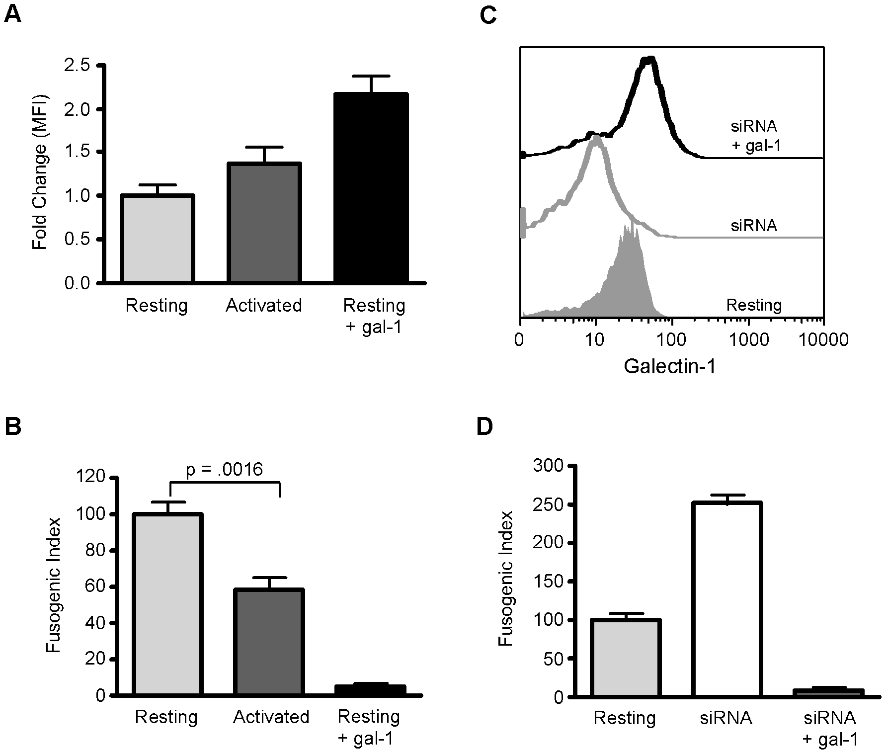 Endogenous endothelial galectin-1 inhibits NiV-F and NiV-G mediated syncytia formation.
