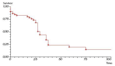 Prežívanie pacientov s karcinómom pankreasu po radikálnej resekcii skupina B operovaní 1. 1. 2005–31. 12. 2009 Graph 3. Survival rate of pancreatic cancer patients after pancreatic resection group B operation 1. 1. 2005–31. 12. 2009
