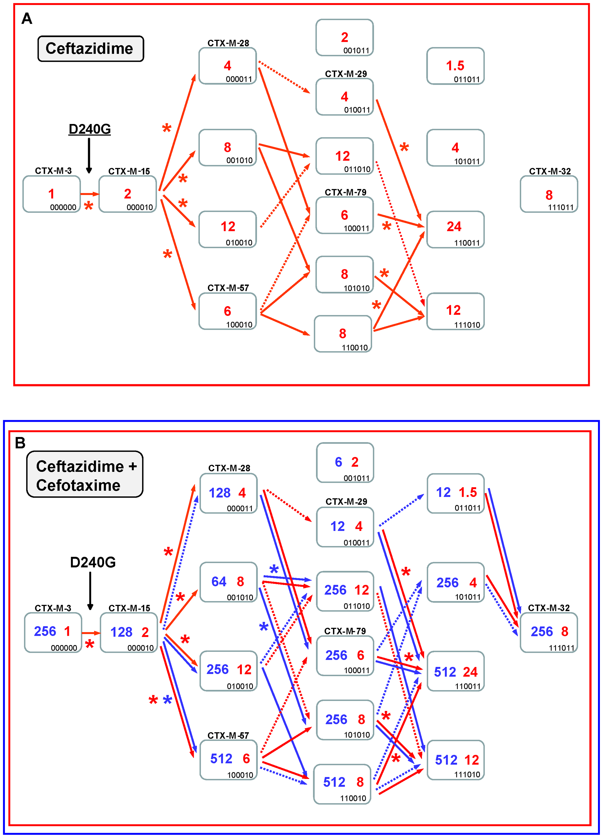 Mutational pathways showing the diversification of CTX-M-3 towards the most evolved variants, determined by step-by-step site-specific mutagenesis: the D240 pathway.