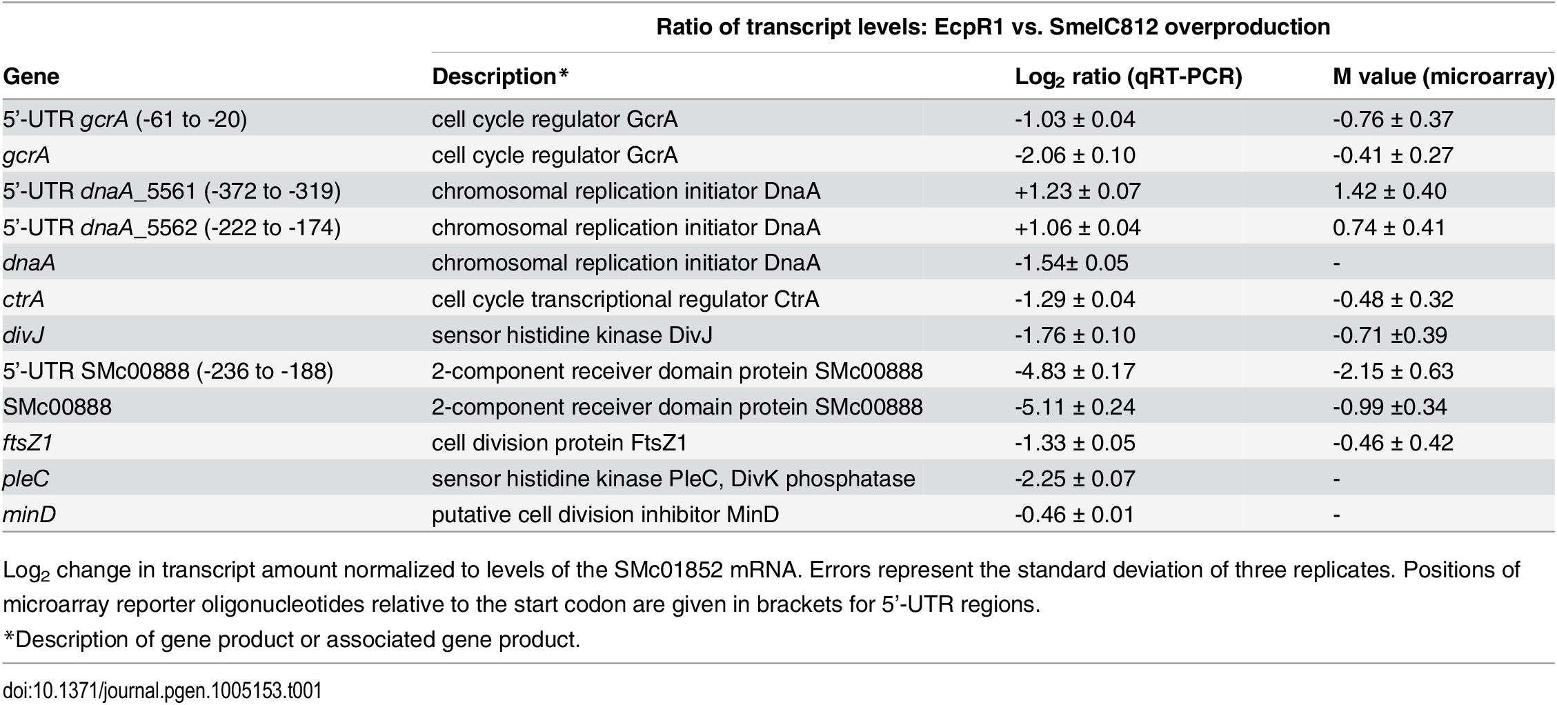 qRT-PCR based verification of putative EcpR1 target genes displaying changes in transcript levels upon overproduction of EcpR1 as detected by global transcriptome profiling.