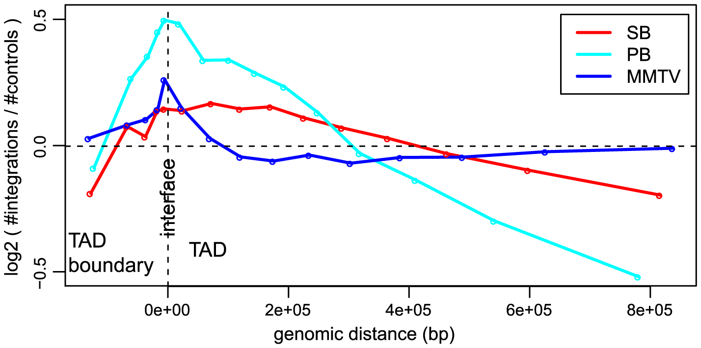 Unselected integration profiles with respect to TAD - TAD boundary interface.