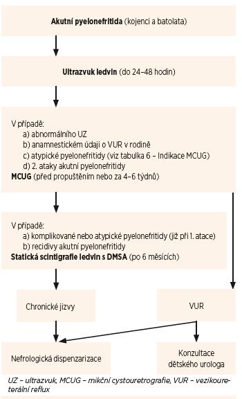 Schéma 1. Diagnostický algoritmus u akutní pyelonefritidy u kojenců a batolat.