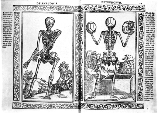 Jacobus Berengarius: Isagogae breves