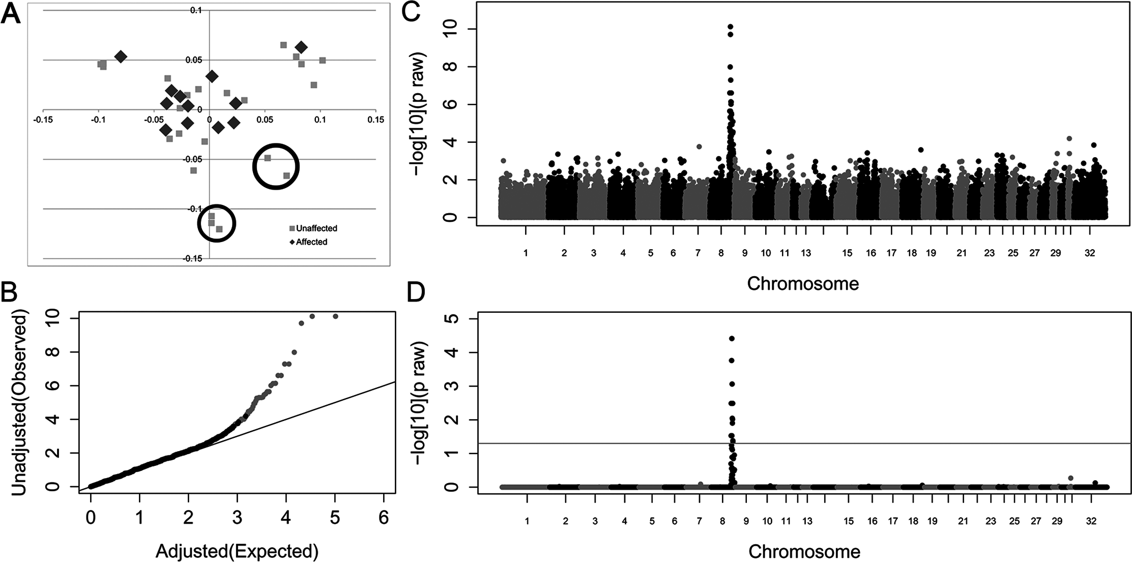 Genome-wide case-control allelic association study results of Connemara ponies with HWSD (15 cases, 24 controls).