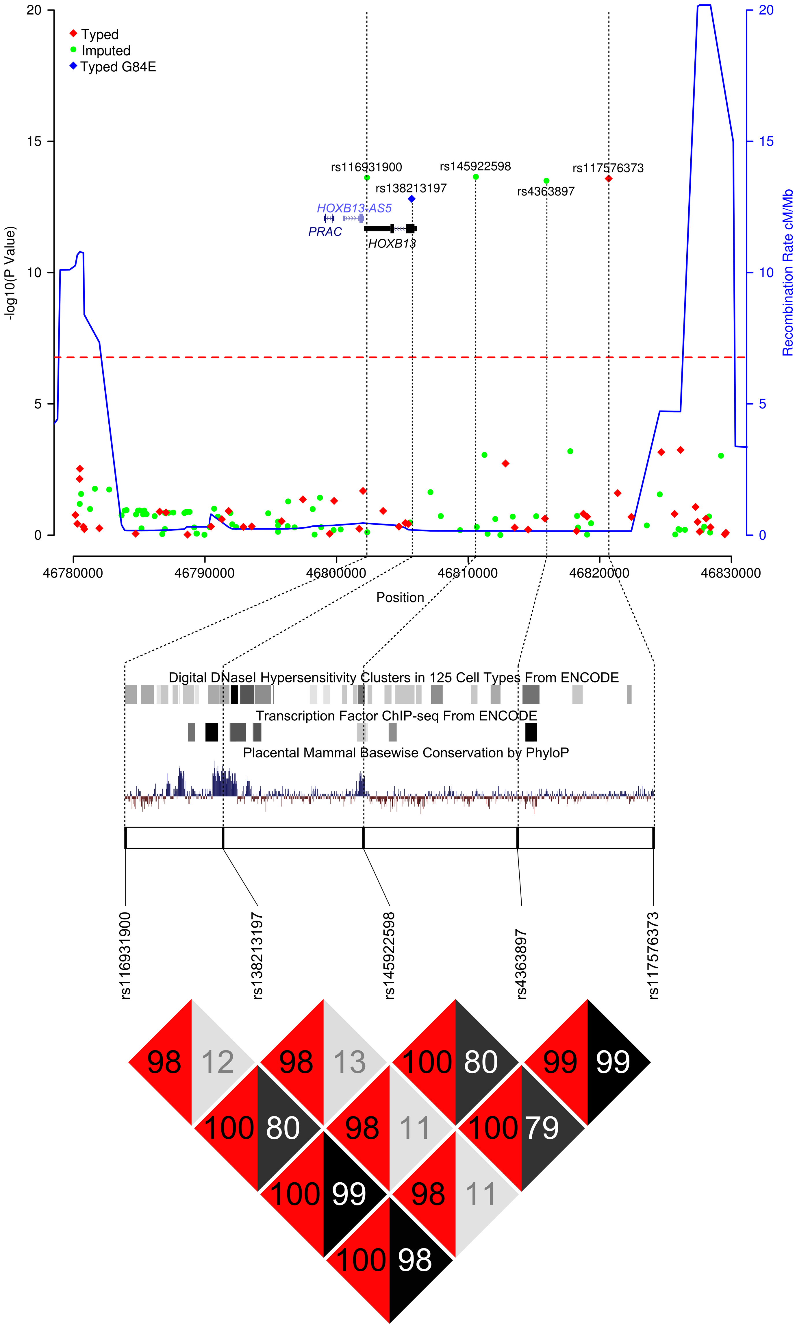 Results of the <i>HOXB</i> locus fine-mapping analysis.