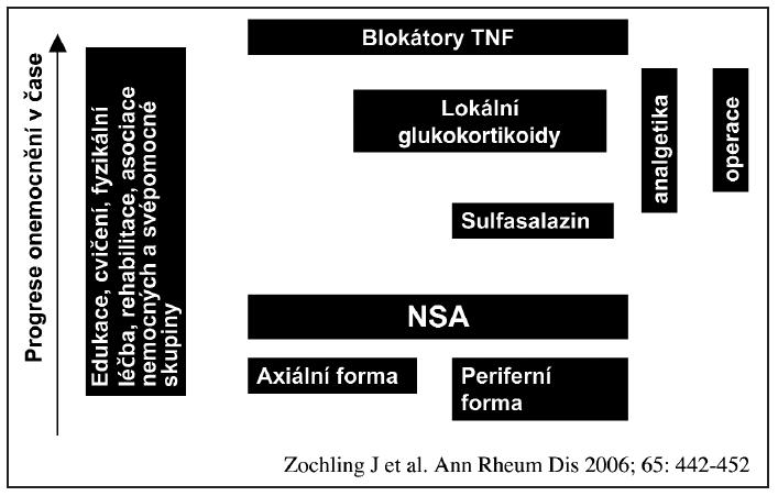 Schematické znázornění strategie léčby AS