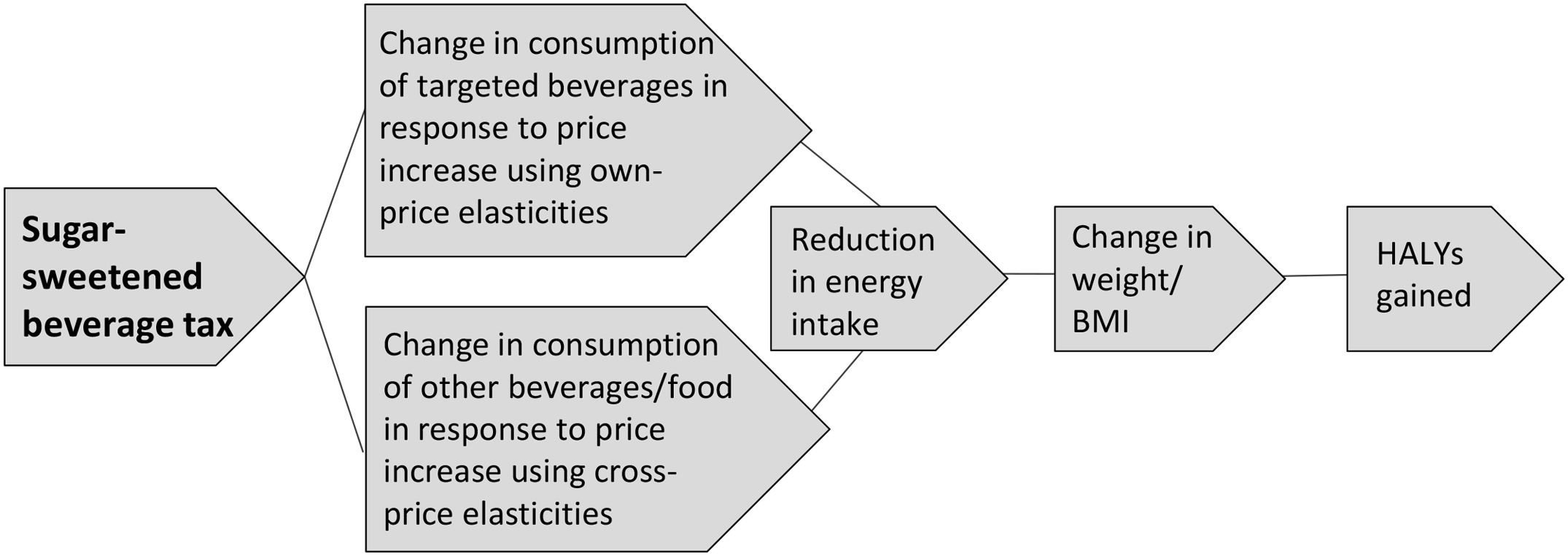 Logic pathway for modelling the health effects of a sugar-sweetened beverage tax.