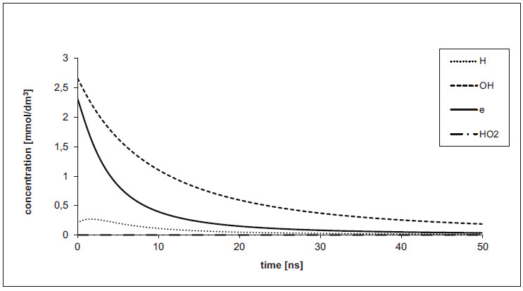 Fig. 3: Concentrations depending on time under anoxic conditions for cluster diameter 27 nm and energy 300 eV.