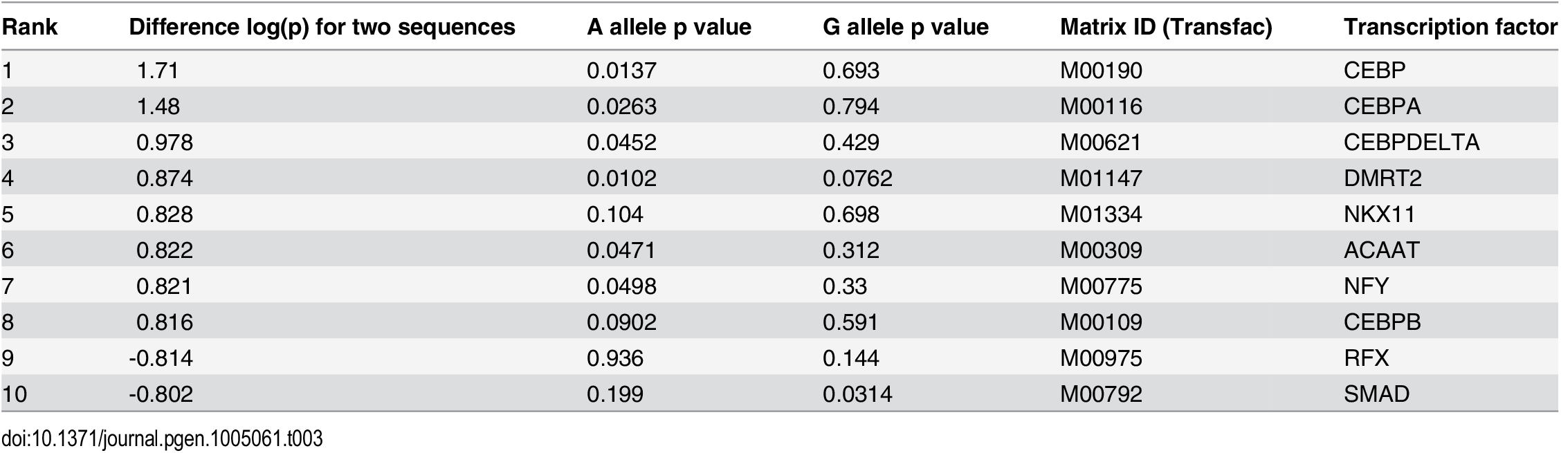 Differential transcription factor motif affinity at the rs72664324 site for the risk G allele and the protective A allele.